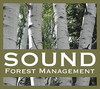 Sound Forest Management LLC